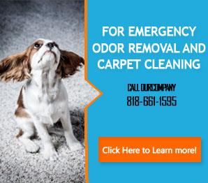 Carpet Cleaning Tarzana, CA | 818-661-1595 | Steam Clean
